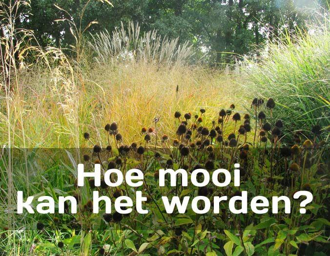 Beplantingsplan Natuurlijke Tuin : Grassenerf ontwerp je tuin samen met grassenerf tuinontwerp bij
